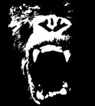 Gorilla97