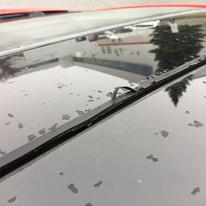 Sunroof seal deterioration
