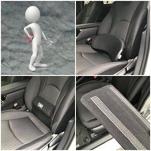 Prius Lumbar Support cushion