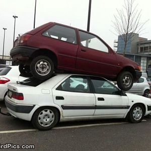 Weirdpictures-perfect_Parking_Spot