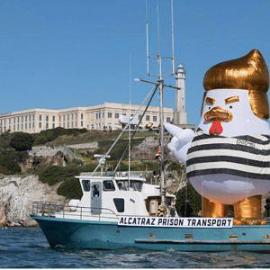 TrumpChicken
