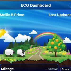 Eco Dashboard while loading data